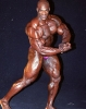 Ronnie-Coleman_117