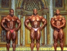 Ronnie-Coleman_129