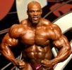 Ronnie-Coleman_191