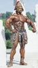 Ronnie-Coleman_55
