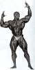Ronnie-Coleman_56