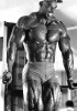 Ronnie-Coleman_61