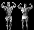 Lee-Priest_20