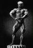 Lee-Priest_2