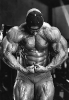Kevin-Levrone_26