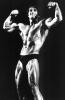 Arnold-Schwarzenegger_145