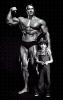 Arnold-Schwarzenegger_154
