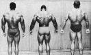 Arnold-Schwarzenegger_165