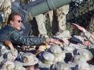 Arnold-Schwarzenegger_208