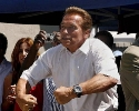 Arnold-Schwarzenegger_210