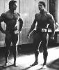 Arnold-Schwarzenegger_224