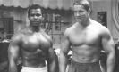 Arnold-Schwarzenegger_25