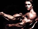 Arnold-Schwarzenegger_30