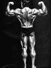 Arnold-Schwarzenegger_32