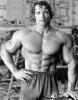 Arnold-Schwarzenegger_65