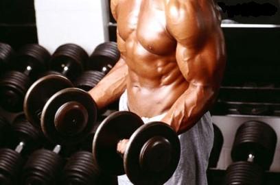 Наращивание мышц и расход энергии