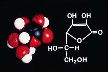 Что такое витамины. Витамины в спорте