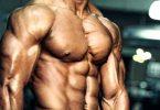 Тело с низким содержанием подкожного жира